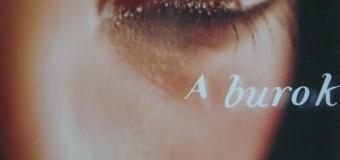 Stephenie Meyer-The host (A burok)